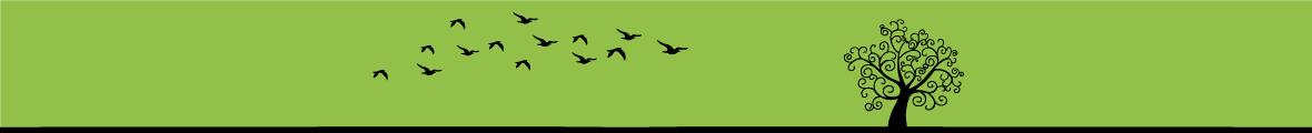 Sito Web Associazione Sportiva MoViMente