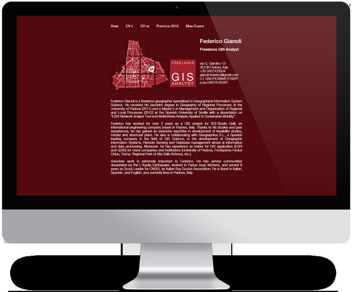 grafica sito web Federico Gianoli
